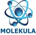 Molekula - prvi hrvatski centar kvantne dijagnostike i terapije